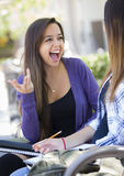Expressive Young Mixed Race Female Sitting and Talking with Girl Stock Photos