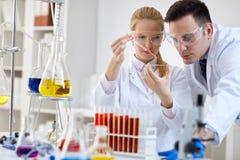 Expérience médicale de microbiologie de chercheur Images stock