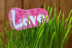 Exprima o amor em um fundo da grama verde Fotografia de Stock Royalty Free