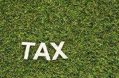 Exprima o imposto feito da madeira na grama artificial Fotos de Stock