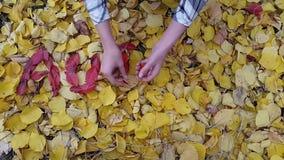 Exprima o outono das folhas vermelhas pelas mãos de uma menina filme