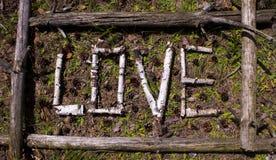 Exprimez l'amour de vieilles branches de bouleau dans un cadre de vieux arbres Images stock