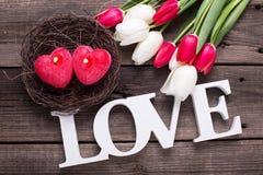Exprimez l'amour, deux bougies rouges sous la forme de coeur dans le nid et lumineux Images stock