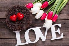 Exprimez l'amour, deux coeurs rouges dans le nid et les fleurs lumineuses de ressort dessus Photos libres de droits