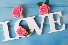 Exprimez l'amour et fleurissez des roses sur le fond en bois bleu Image libre de droits