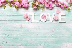 Exprimez l'amour et l'encadrez des fleurs roses d'amande sur le bois de turquoise Photographie stock libre de droits