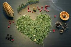 Exprimez l'amour et le coeur faits à partir des aiguilles d'arbre Image libre de droits