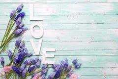 Exprimez l'amour et les fleurs d'amande et bleues roses de muscaries Images stock