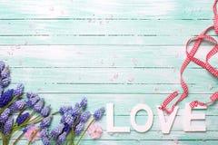 Exprimez l'amour et les fleurs d'amande et bleues roses de muscaries sur des turquois Images stock