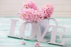 Exprimez l'amour et les fleurs roses dans la boîte d'arrosage décorative sur le turquo Image libre de droits