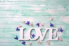 Exprimez l'amour et les petites fleurs roses et violettes Photos stock