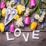 Exprimez l'amour et les tulipes colorées de ressort, narcisse, flowe de muscaries Photo stock