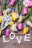 Exprimez l'amour et les tulipes lumineuses de ressort, narcisse, muscaries fleurissent Photo libre de droits