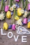 Exprimez l'amour, le coeur et les tulipes lumineuses de ressort, narcisse, muscarie Photographie stock libre de droits