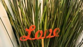 Exprimez l'amour rassemblé des lettres rouges en plan rapproché d'herbe verte image stock