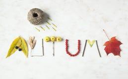 Exprimez l'automne écrit avec des feuilles, pommes, baies, les bâtons d'arbre, n image libre de droits