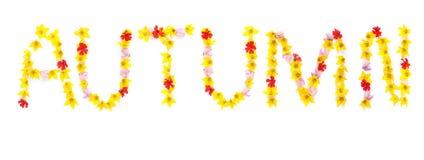 Exprimez l'AUTOMNE écrit avec les fleurs jaunes et rouges Images libres de droits