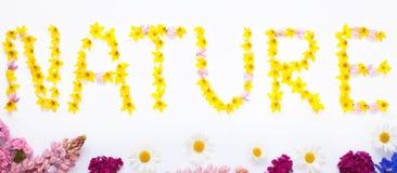 Exprimez la NATURE écrite avec des fleurs de jardin sur le blanc Photo stock