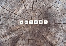 Exprimez la nature des perles d'alphabet sur une surface de tronçon d'arbre dans la forêt Photo libre de droits