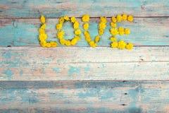 Exprimez le ` d'amour de ` des pissenlits jaunes sur le fond en bois de vieille turquoise photo libre de droits
