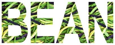 Exprimez le haricot présenté à des haricots multicolores colorés Concept sain de nourriture Produit végétarien Matières premières image libre de droits