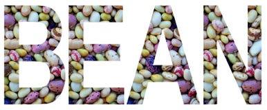 Exprimez le haricot présenté à des haricots multicolores colorés Concept sain de nourriture Produit végétarien Matières premières photos libres de droits