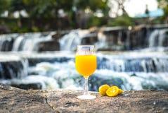 Exprimió recientemente el zumo de naranja en las naranjas de cristal y frescas en piedra con el fondo de la cascada imágenes de archivo libres de regalías