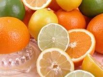 Exprimidor de la fruta cítrica Foto de archivo libre de regalías