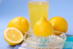 Exprimidor del limón fotos de archivo libres de regalías