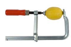 Exprimidor del limón Foto de archivo libre de regalías