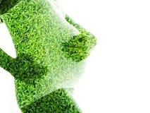 Exproure dobro das folhas da mulher gravida e do verde isoladas no fundo branco Fotos de Stock Royalty Free