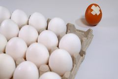 Expulsion from the white eggs box one differ in color damaged egg. A cardboard box of white eggs and one egg of dark color is not in the box it is damaged and Stock Photos
