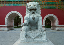 Exquisite carvings  Lion ming china Stock Photography