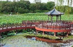 Exquisite Chinese Garden. Lotus pond Stock Photos