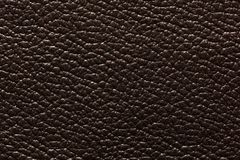 Exquisite dark leather texture with contrast surface. Royalty Free Stock Images