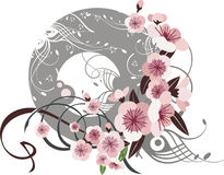 Exquisite floral design Royalty Free Stock Photo