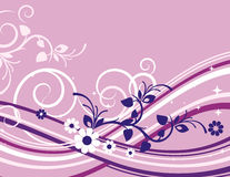 Exquisite floral series. Exquisite floral background with scroll elements Stock Images