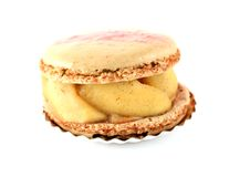 Exquisite french macaron Royalty Free Stock Photography