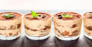 exquisite Italian dessert tiramisu decorated with mint on a dark wooden background Royalty Free Stock Photos