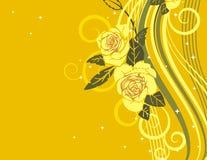 Exquisite rose series Stock Images