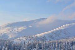 Magic winter mountains in Dragobrat. Exquisite winter mountains at sunrise in Ukraine Dragobrat Royalty Free Stock Photos