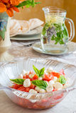 Exquisitely decorated summer time dinner table setting. Stock Images
