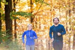 Extérieur courant de beaux couples dans la forêt ensoleillée d'automne Photo libre de droits