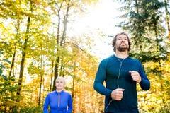Extérieur courant de beaux couples dans la forêt ensoleillée d'automne Photos libres de droits