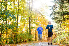 Extérieur courant de beaux couples dans la forêt ensoleillée d'automne Photos stock