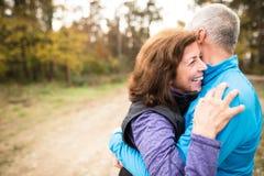 Extérieur courant de beaux couples supérieurs dans la forêt ensoleillée d'automne Photographie stock