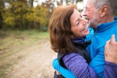 Extérieur courant de beaux couples supérieurs dans la forêt ensoleillée d'automne Images stock