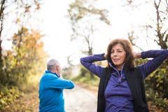 Extérieur courant de couples supérieurs dans la forêt ensoleillée d'automne, s'étendant Photographie stock