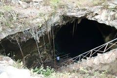 Extasie a um cenote em Cuzama imagens de stock