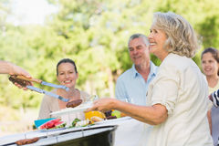 Extended family dining at outdoor table Royalty Free Stock Photos